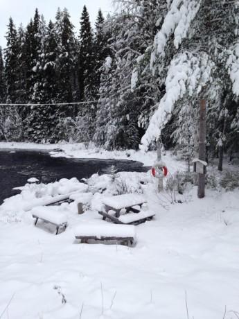 Vinter_6jan2015